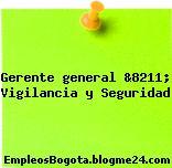 Gerente general &8211; Vigilancia y Seguridad