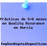 Prácticas de 5-6 meses en Quality Assurance en Murcia