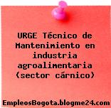 URGE Técnico de Mantenimiento en industria agroalimentaria (sector cárnico)
