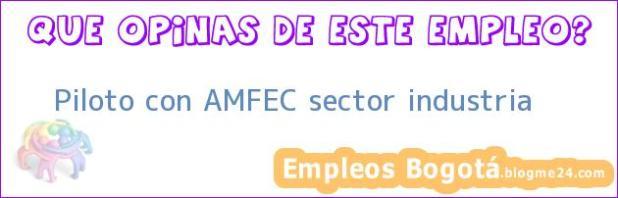 Piloto con AMFEC sector industria