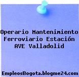 Operario Mantenimiento Ferroviario Estación AVE Valladolid