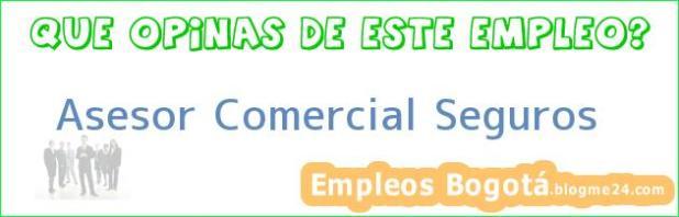 ASESOR COMERCIAL SEGUROS