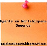 Agente en Nortehispana Seguros