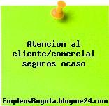 Atencion al cliente/comercial seguros ocaso