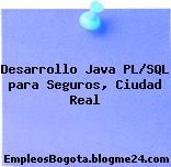 Desarrollo Java PL/SQL para Seguros, Ciudad Real