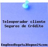 Teleoperador cliente Seguros de Crédito
