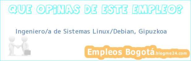 Ingeniero/a de Sistemas Linux/Debian, Gipuzkoa