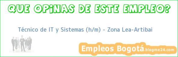 Técnico de IT y Sistemas (h/m) – Zona Lea-Artibai