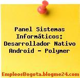 Panel Sistemas Informáticos: Desarrollador Nativo Android – Polymer