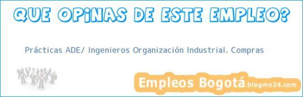 Prácticas ADE/ Ingenieros Organización Industrial. Compras