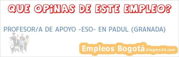 """PROFESOR/A DE APOYO """"ESO"""" EN PADUL (GRANADA)"""