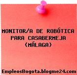 MONITOR/A DE ROBÓTICA PARA CASABERMEJA (MÁLAGA)
