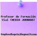 Profesor de Formación Vial (MEDIA JORNADA)