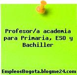 Profesor/a academia para Primaria, ESO y Bachiller