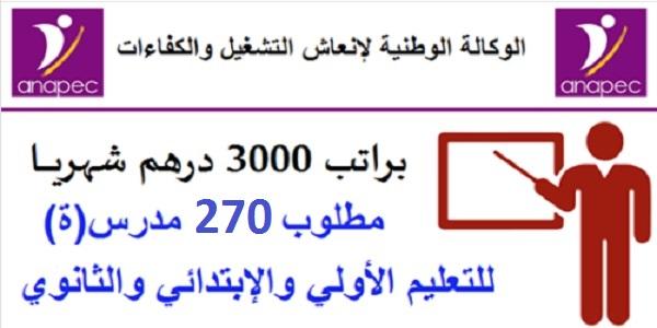 مطلوب 270 أستاذ(ة) للتعليم الخصوصي حاصلين على الباك أو الدبلوم أو الإجازة براتب 3000 درهم شهريا
