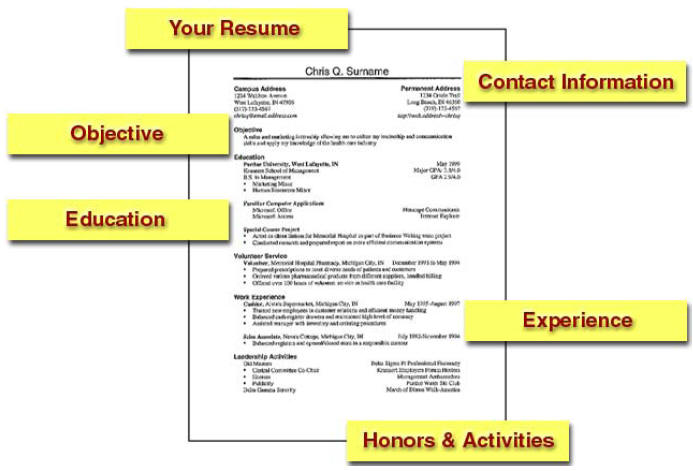 Free Sample Resumes For College Students. Examples Of Resume For