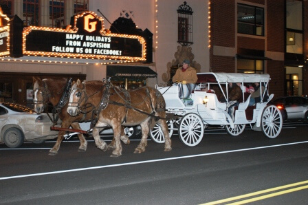 2011-carriage-rides-compressed