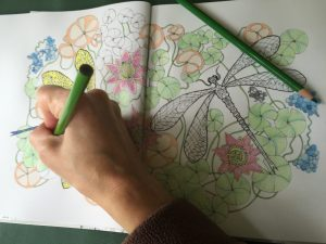 Coloring books for adults