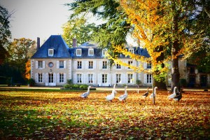 Chateau in Fall