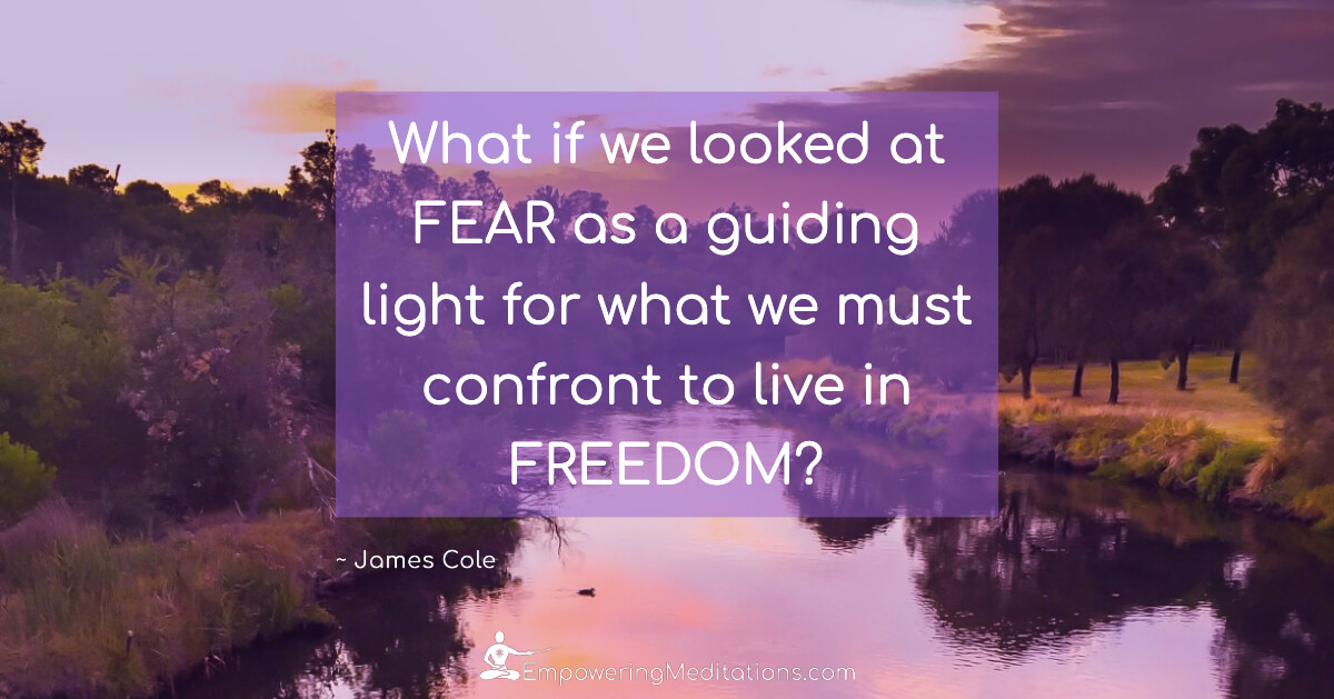 Meme - What if we looked at fear - Page