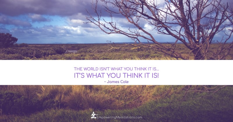 Meme - The world isn't what you think it is - Page