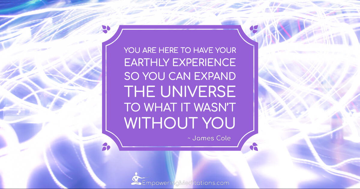 Meme - You are here to have your earthly experience - Page