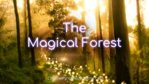 16b-The-Magical-Forest