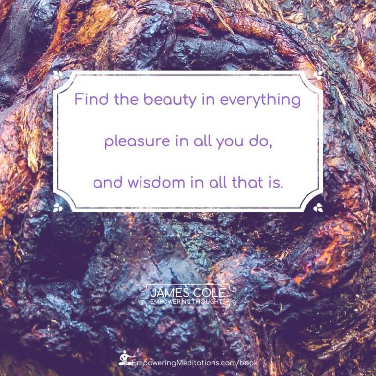 """""""Find the beauty in everything pleasure in all you do, and wisdom in all that is."""""""