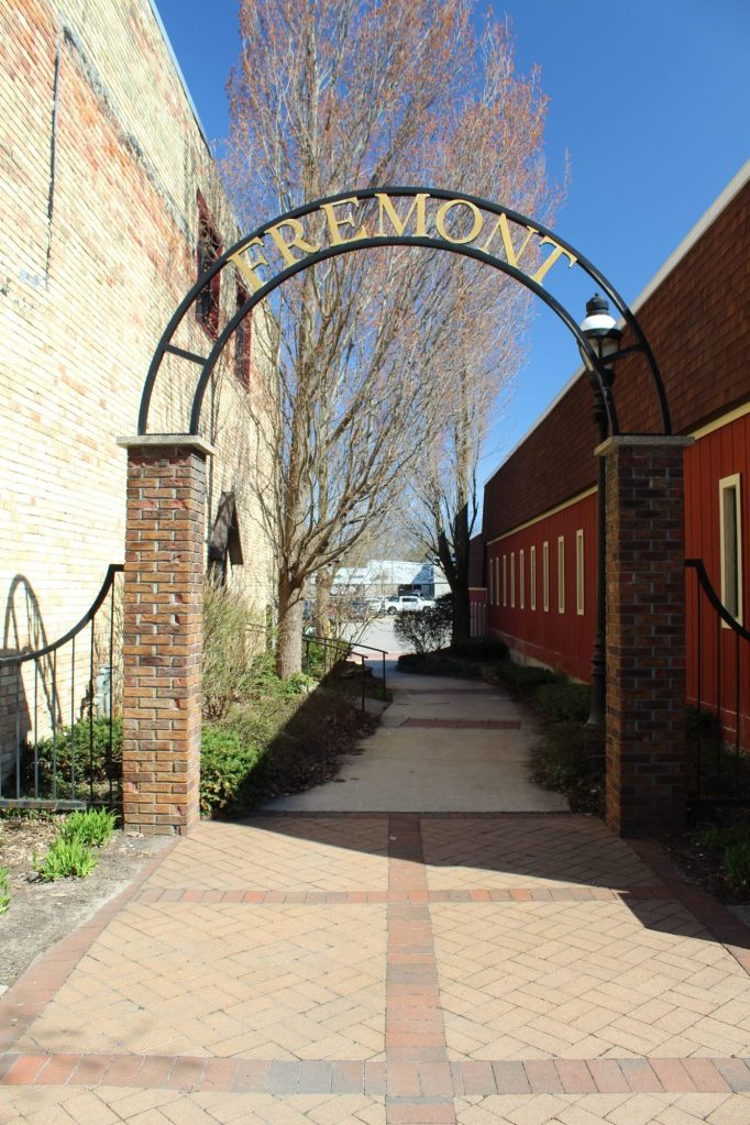 Empowerment Network - Fremont MI - alley in our town