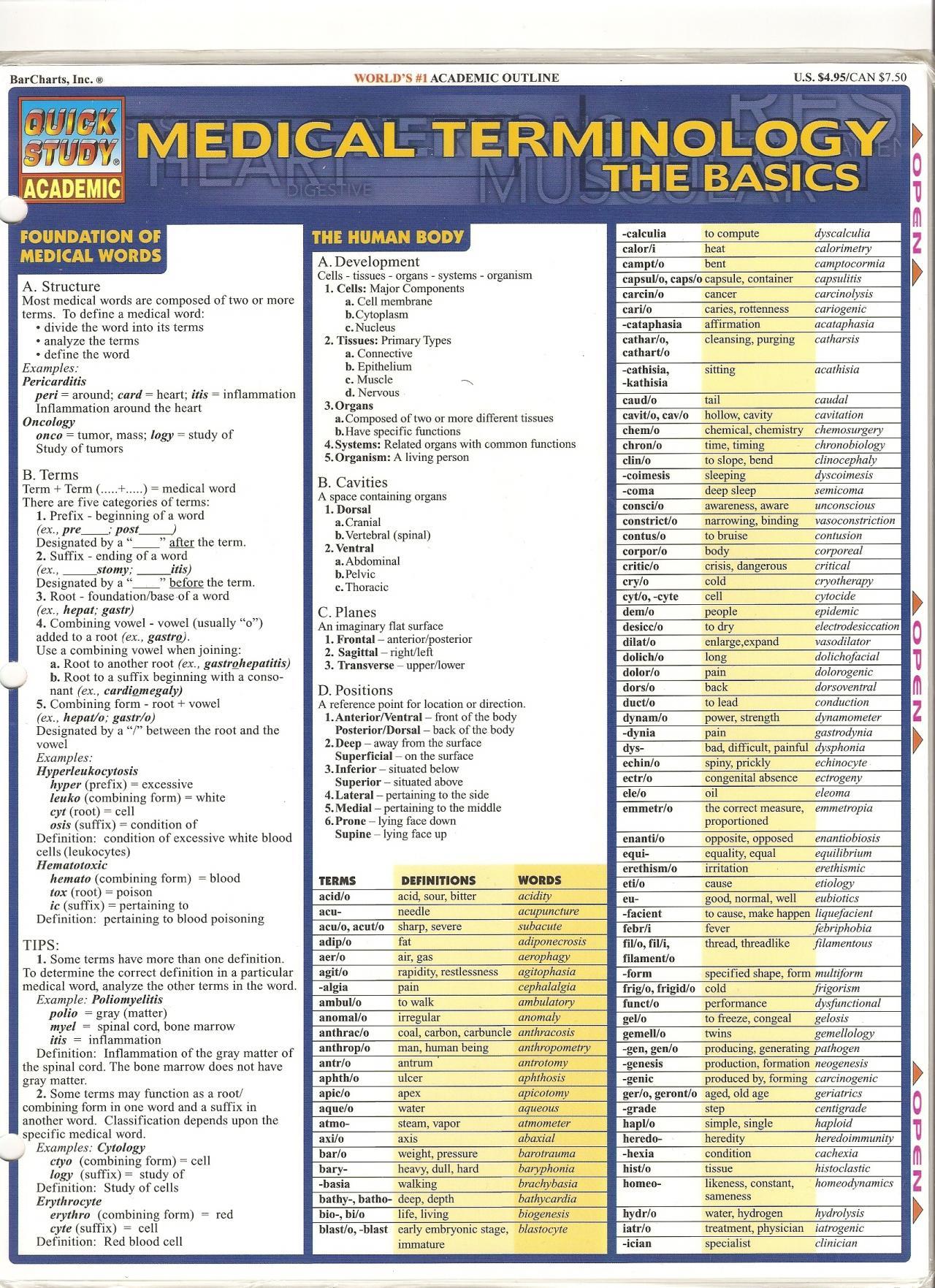 Printable Basic Medical Terminology List