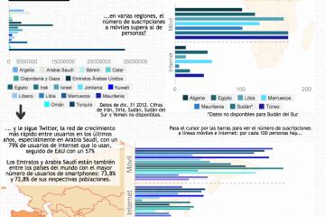 TIC Norte de África y Oriente Próximo