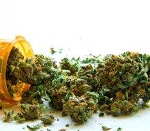How Marijuana can Improve Productivity