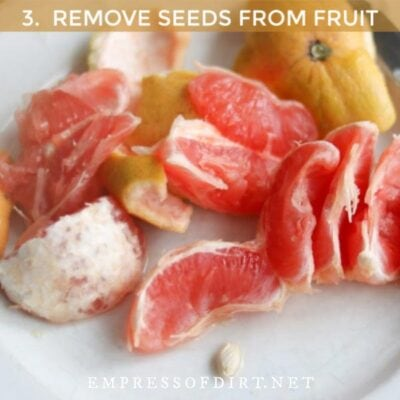 Pink grapefruit with one seed.