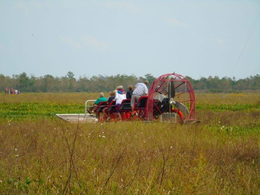 Jean Lafitte Swamp Tour 1