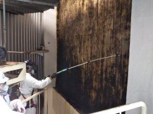 壁にカビ取り剤噴霧