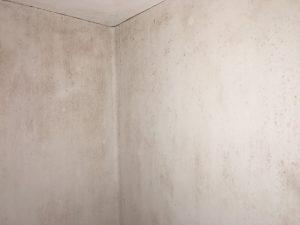 カビだらけの壁2