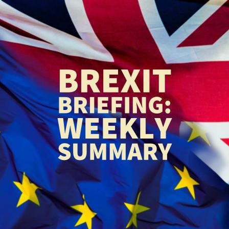 Brexit Briefing - Weekly Summary
