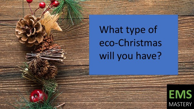 What type of eco-Christmas will you have?