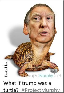 What If Trump Was a Turtle?