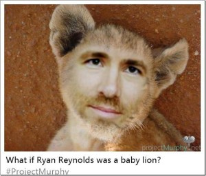 What If Ryan Reynolds Was a Baby Lion?
