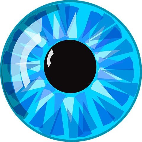 Medical Terminology Ocul - Eye