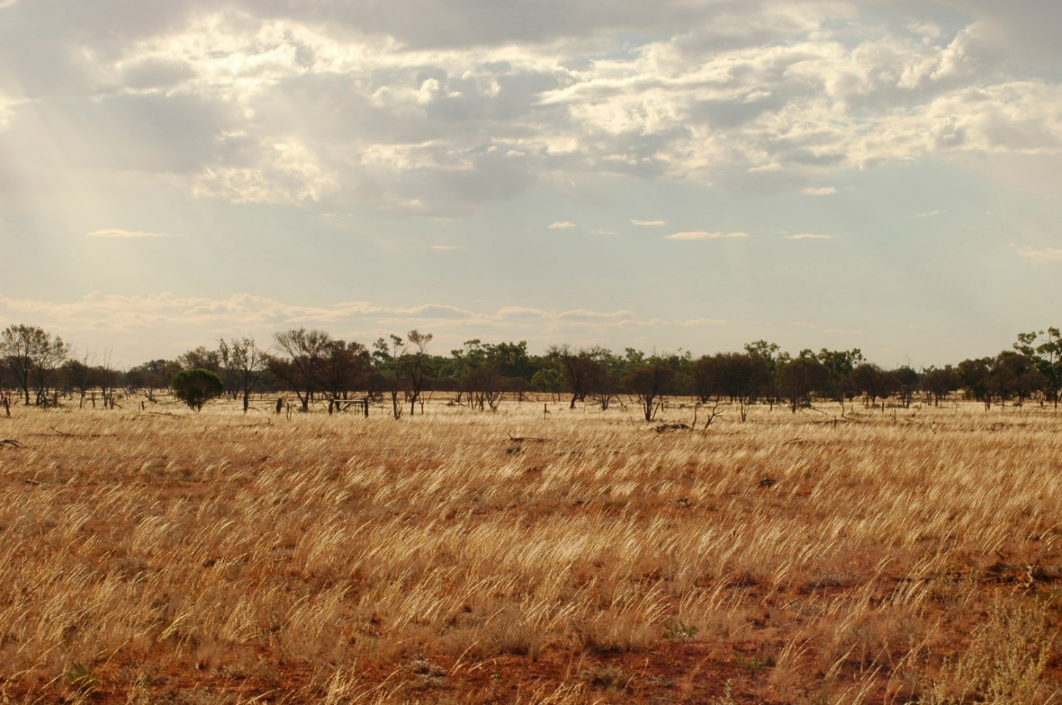 NSW Outback 2