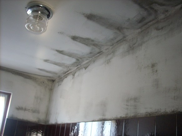 Mold inside a bathroom, caused by low surface temperatures and lack of ventilation. - photo by Damiano Chiarini.