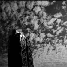 Stand apart - Kodak TMAX 100