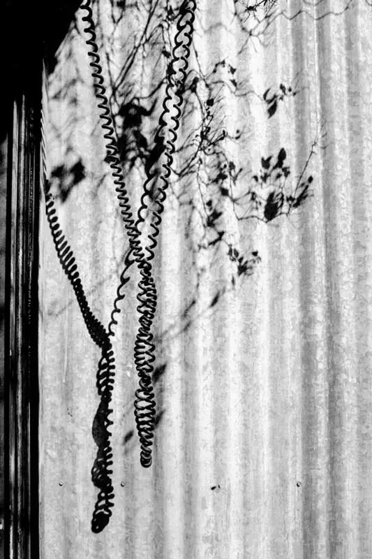 Twisted - 35mm Kodak 5222 (Double-X) souped in 510-Pyro (1:100 for 12min)