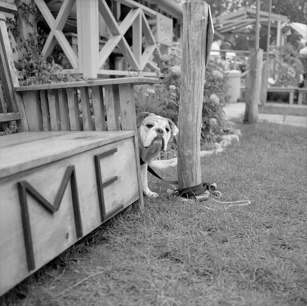 Me - I am Here