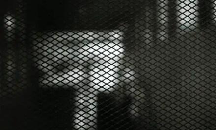 Mesh-ing around – Kodak Tri-X 400 (120)