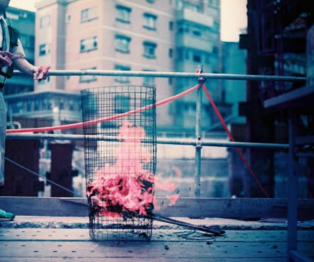 Phoenix rising – Shot on Lomography Lomochrome Purple XR 100-400 at EI 400 (35mm format)