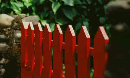 Picket fence – Fuji Velvia 100 – RVP 100 (120)