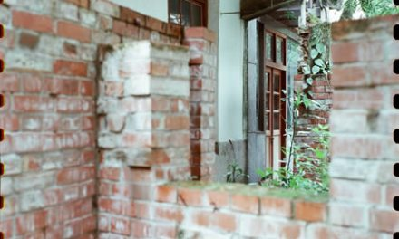 Behind door #3 – Kodak 250D 5207 (65mm)